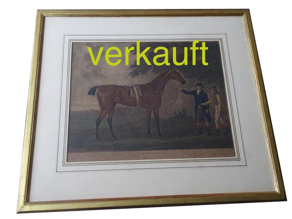 verkaut-pferdestich-hambletonian-jan16a