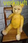 Verkauft Teddy gelb April16A